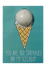 You are the Sprinkle Blaster Card 50g